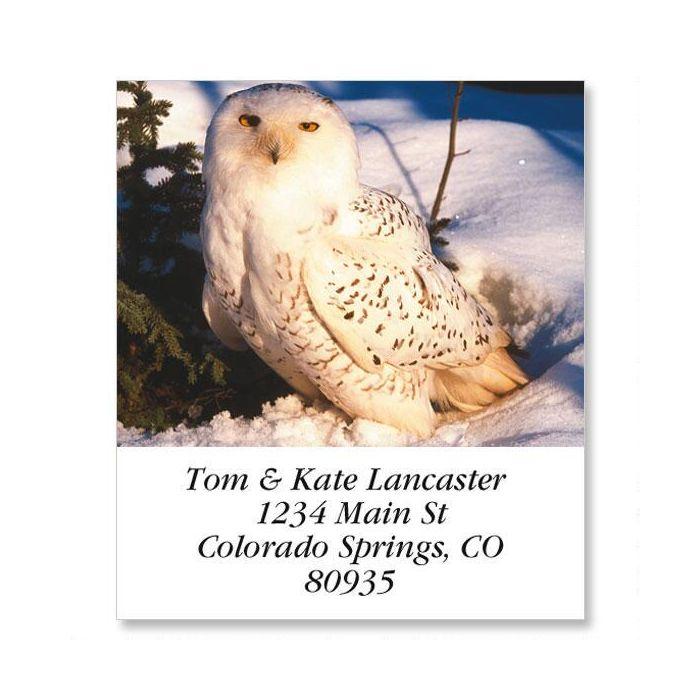 owls select address labels