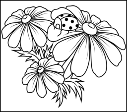 Camomile Coloring Page. Printables. Apps for Kids.