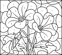 Campanula Coloring Page. Printables. Apps for Kids.