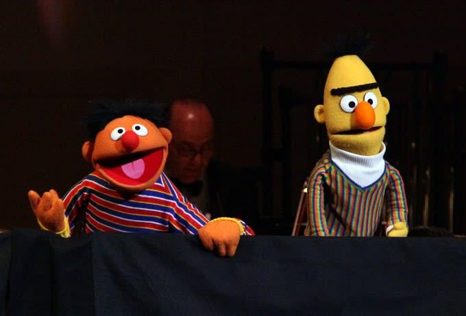 Bert And Ernie Gay