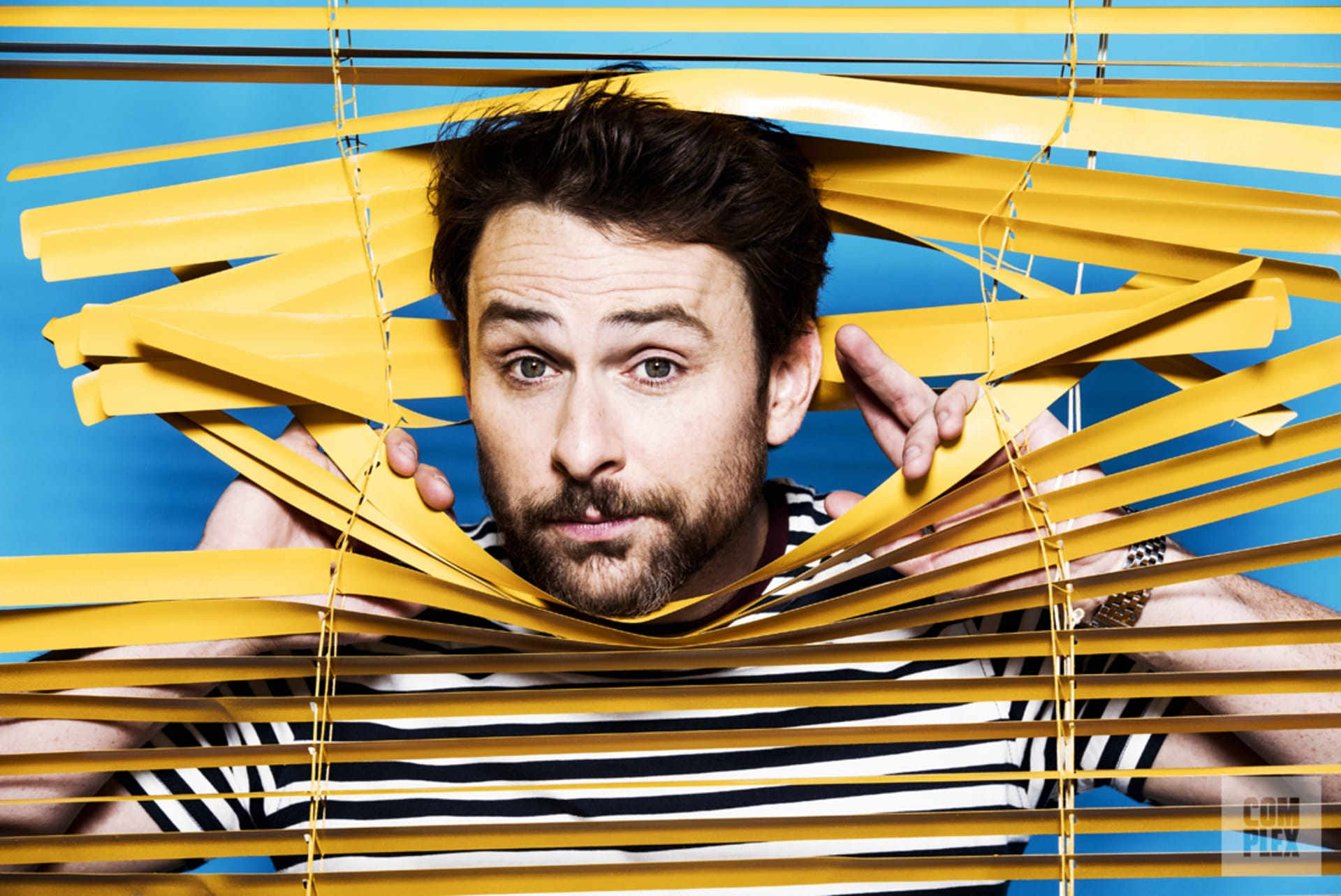 charlie day is hollywood
