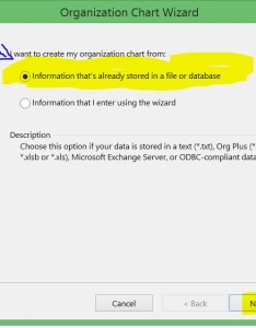 The first option is interesting which helps you to create an org chart in minutes select  cinformation stored file or database   and click next as shown also visio tutorial using  exchange server rh concurrency