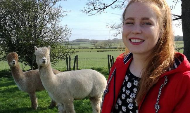 girl-with-alpaca
