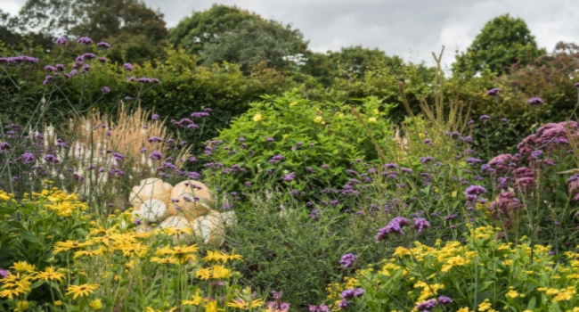 A view from Ness Botanic Gardens