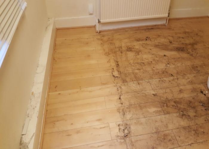 wooden-floor-kingston