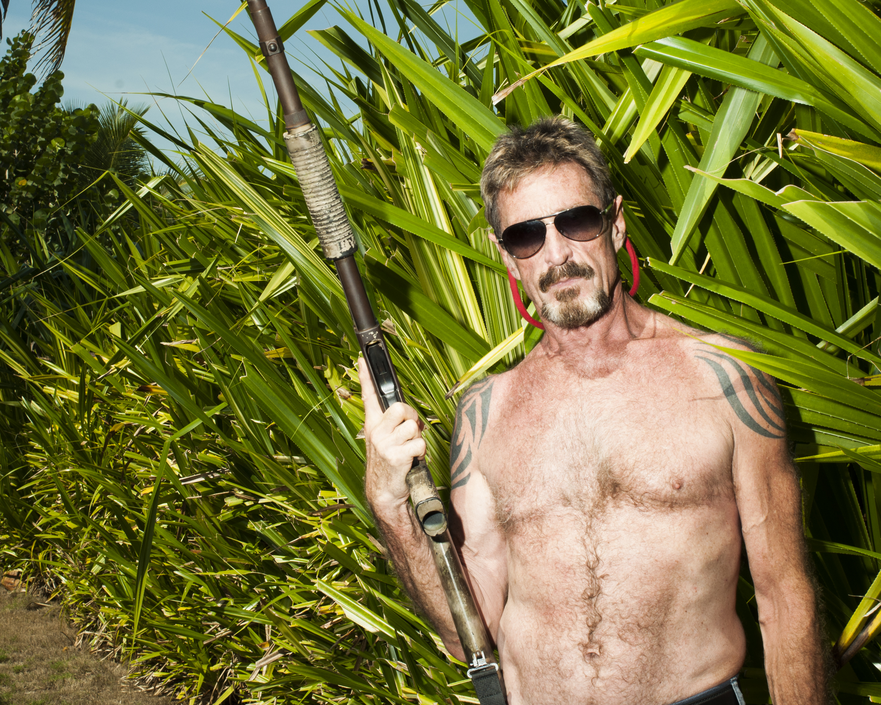 Image result for gringo: the dangerous life of john mcafee