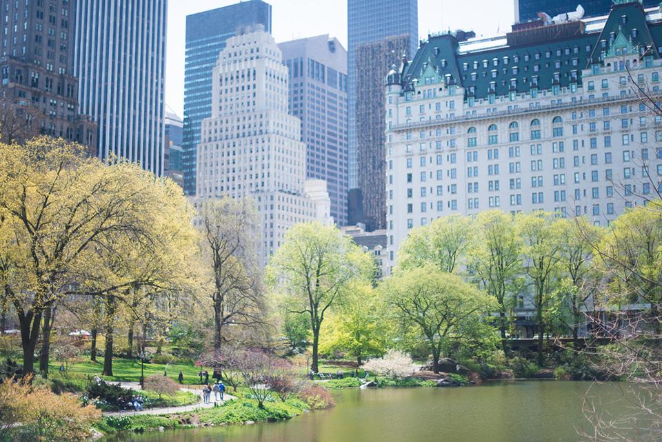 Upper East Side NYC Neighborhood Guide  Compass