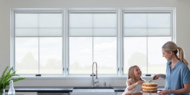between the glass blinds shades for