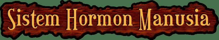Sistem Hormon Manusia