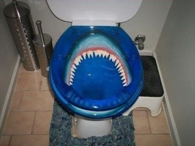 Shark Toilet  A Bathroom Project  Decorating on Cut Out  Keep