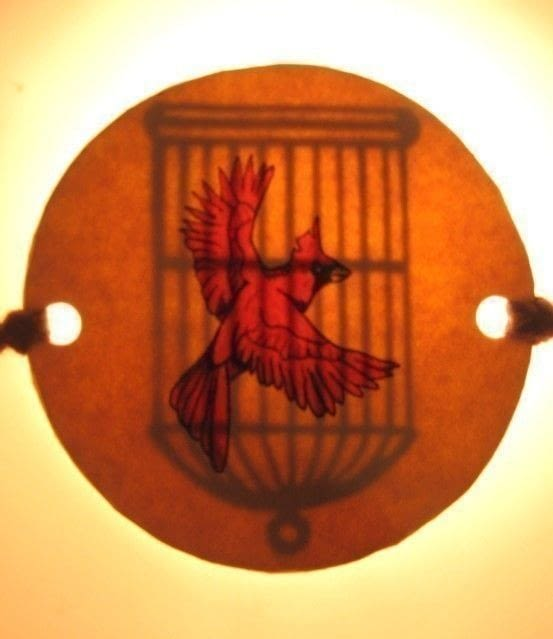 Bird Cage Optical Illusion How To Make A Toy Art