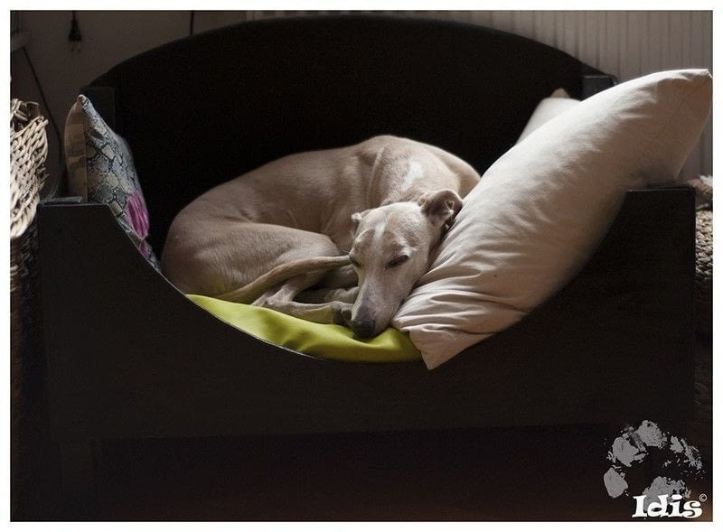 pet dog sofa white leather electric the whippet bed! · a bed sewing and woodwork on cut ...