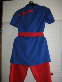 Dragon Ball Z Chi Chi Costume  How To Make An Chracter ...