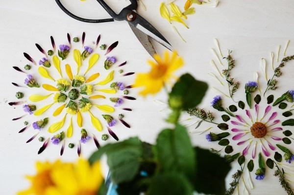 Nature Mandalas Make Piece Of Pressed Flower