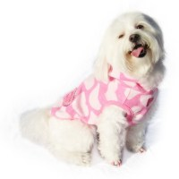 Clothes For Dogs  How To Make A Dog Outfit  Sewing on