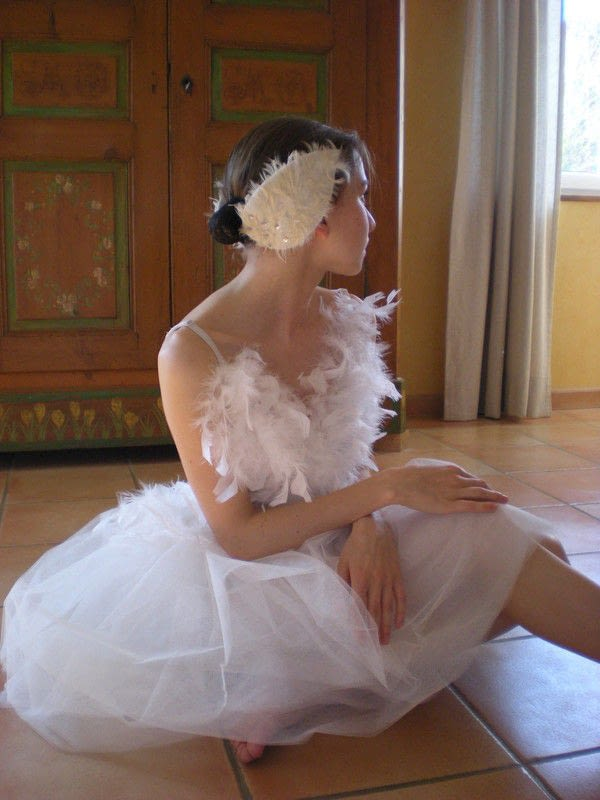 My Black Swan Costumes The White Swan  A Full Costume