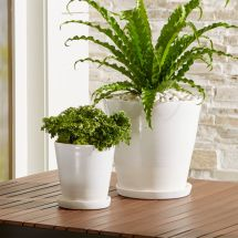 Dyp White Two-tone Planters Crate And Barrel