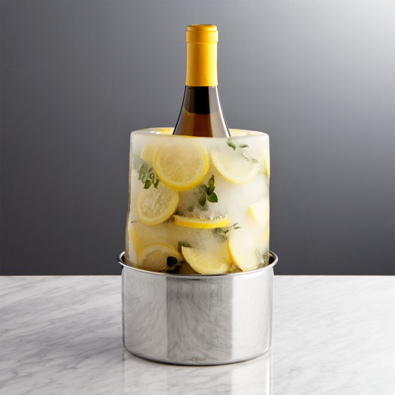Ice MoldWine Bottle Chiller  Crate and Barrel