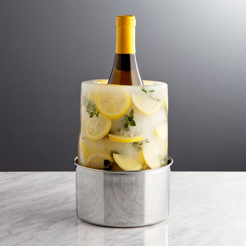 ice mold wine bottle