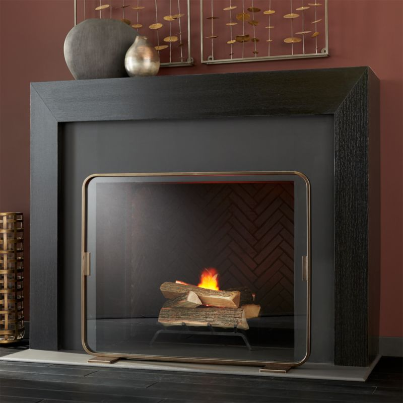 Lana Brass Fireplace Screen Reviews Crate And Barrel