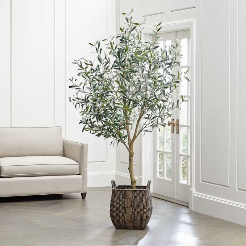 living room cushions open shelving units faux olive tree + reviews | crate and barrel