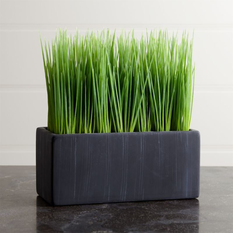 Large Potted Grass Reviews Crate And Barrel