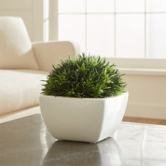 Moss Studio Sofa Reviews Best Fabric To Repel Dog Hair Potted Artificial Crate And Barrel Pottedmossinwhitepotshf16