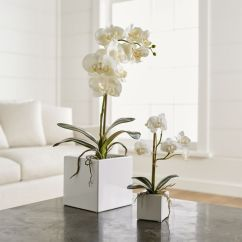 Chairs Crate And Barrel Where To Buy Folding Faux Orchids |
