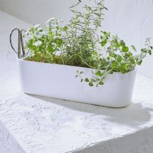 Herb Planter With Scissors Crate And Barrel