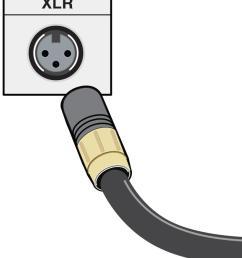 xlr cables [ 820 x 978 Pixel ]