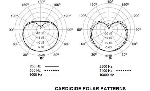 Shure KSM141 Dual-pattern instrument condenser microphone
