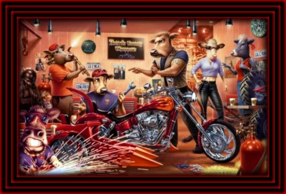 Biker Wallpaper Quotes Dogs And Motorcycles Facebook Comments And Graphics Dogs