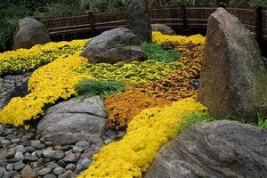 Colored Garden Rocks