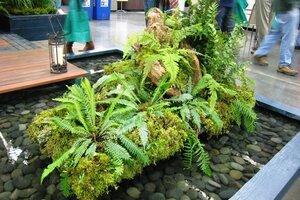 Five Great Ideas From Water Garden Designers CSMonitor Com