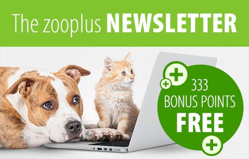 pet supplies at zooplus