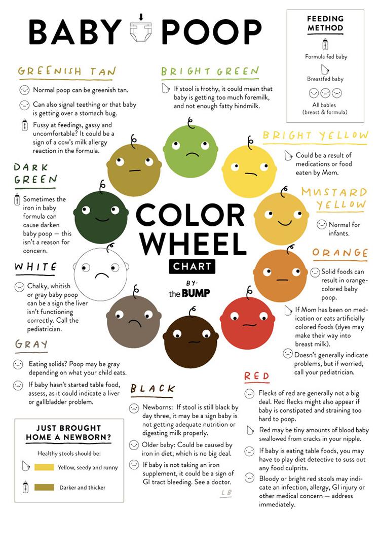 Baby poop color wheel also guide rh thebump
