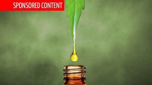 CBD Oil UK: Discover the 8 Best CBD Oils in the UK (2020)