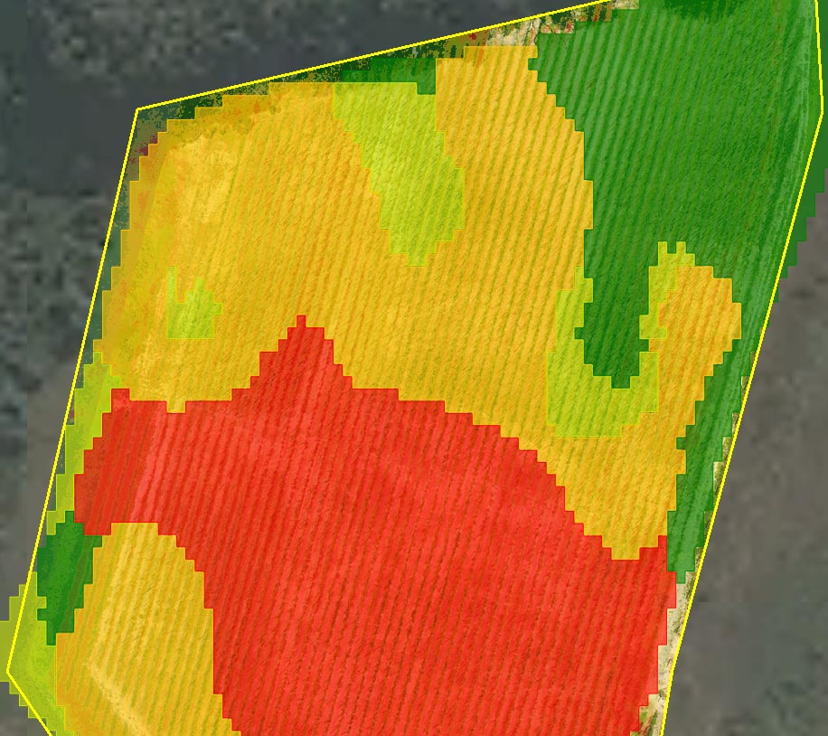 Cheers to precision farming: drone mapping a hop field   Precision