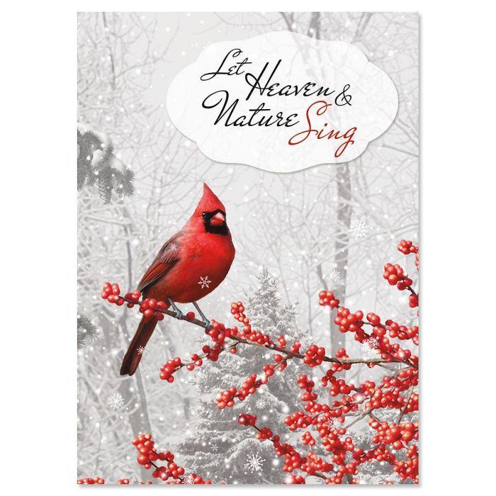 Winterberry Cardinal Christmas Cards Current Catalog