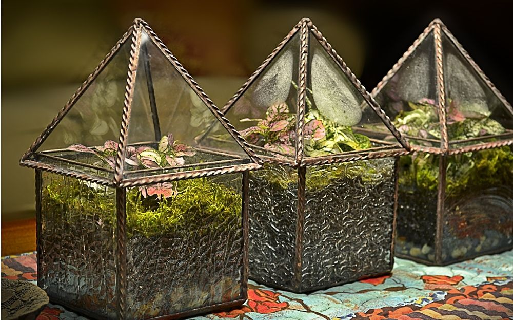 Handmade 4 X 4X 8 Terrarium  Display Case by BC
