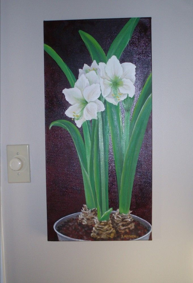 Custom Realistic Oil Painting Of Potted Amaryllis Plants