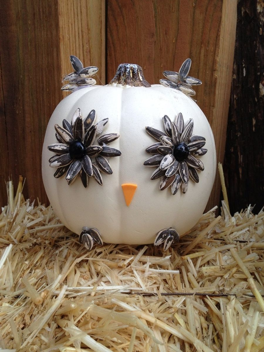 Hand Made White Owl Pumpkin by Taz Creations  CustomMadecom