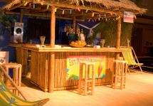 Outdoor Tiki Bar Kits