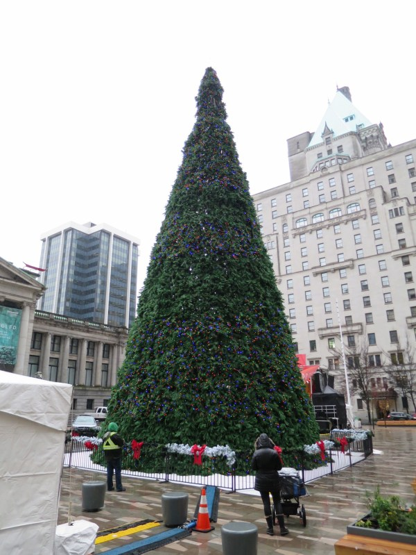 80 Ft Vancouver' Official Christmas Tree 60