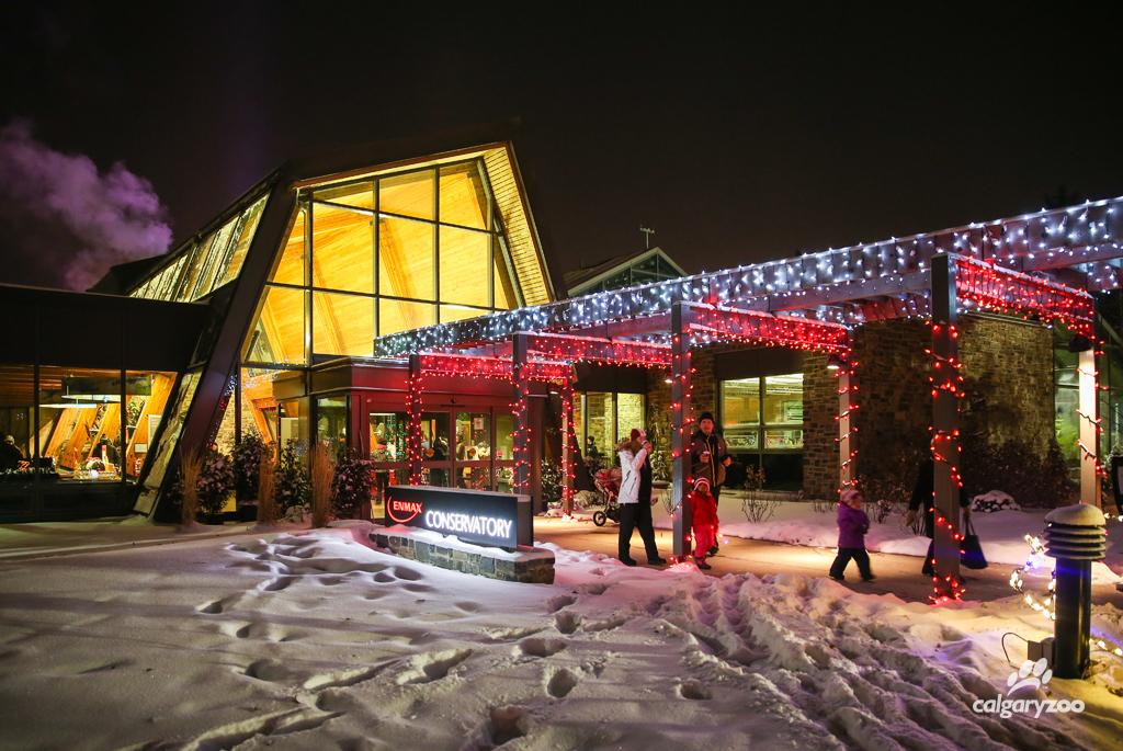 Zoo Lights Parking Calgary