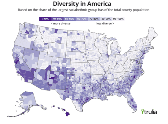 diversity-in-usa-2010_1_.png
