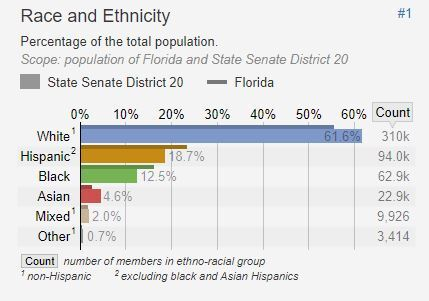 District-20-Demographics1.jpg