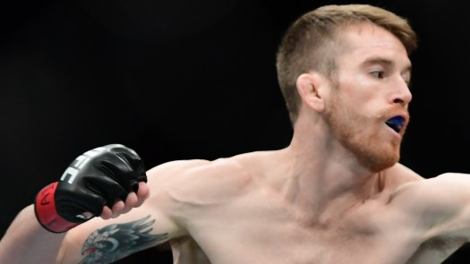 Cory Sandhagen: A new wolf in the UFC bantamweight pack ...