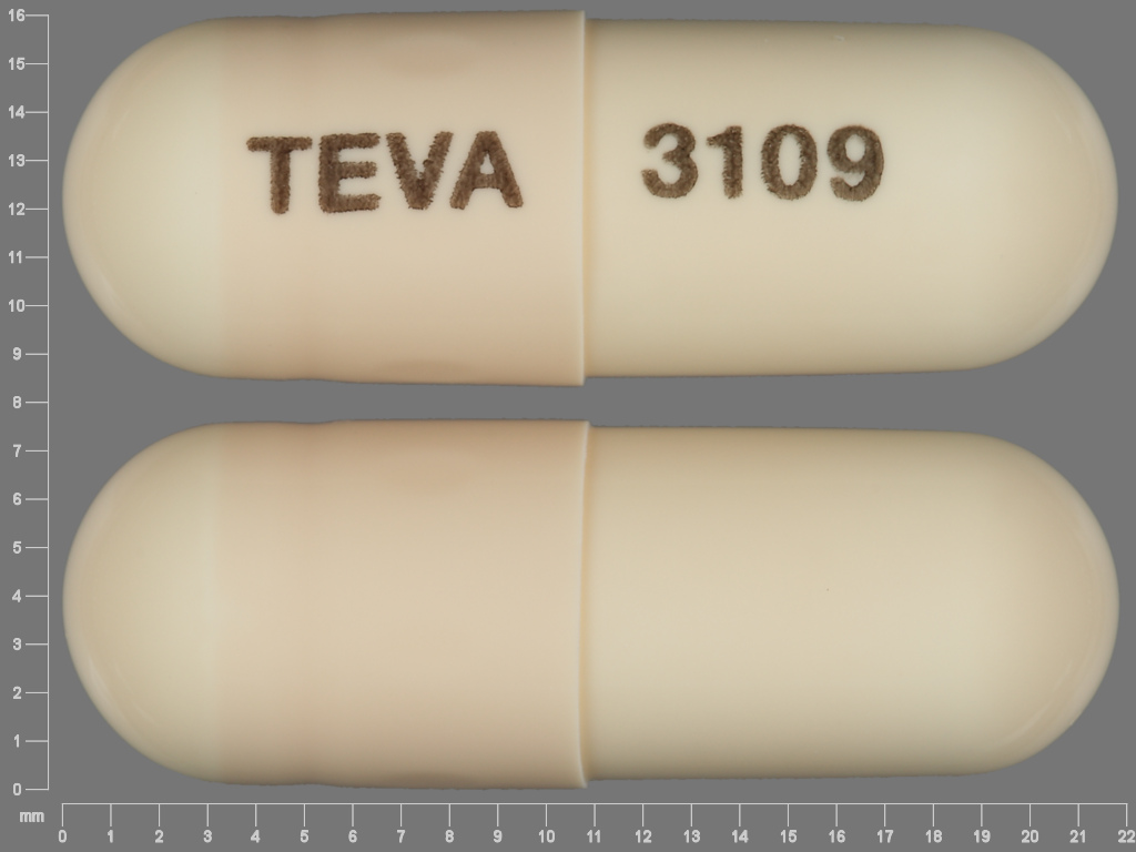 TEVA 3109 Pill - amoxicillin 500 mg