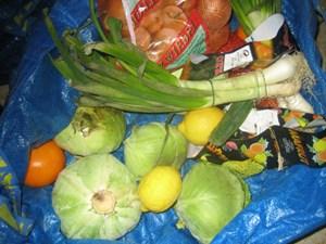 Artikelbild: Obst, Gemüse, Brot, Milchprodukte - in der Stadt landet naturgemäß mehr im Mist als auf dem Land. - Foto: derStandard.at/Kapeller